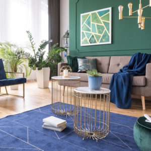 Green and blue living room interior design with rug, coffee tables and comfortable furniture