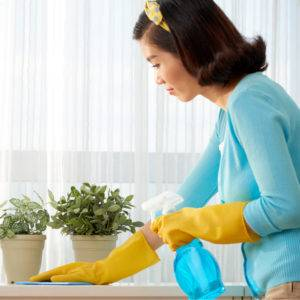 Housewife cleaning all the surfaces in her house