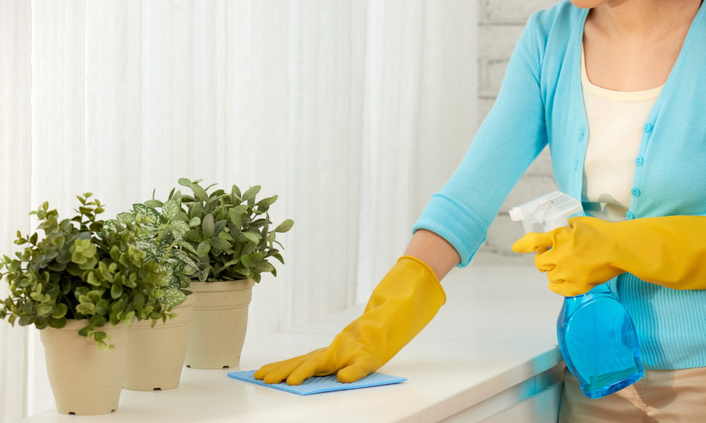 woman wiping off dust from the countertop by the window