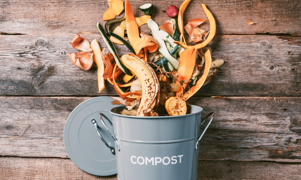 Vegetable scraps and fruit peels in a compost bin