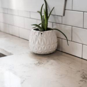 Minimalist marble kitchen countertop with aloe vera potted plant
