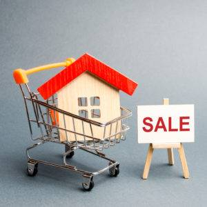 Shopping for a new home, buying a new resale flat
