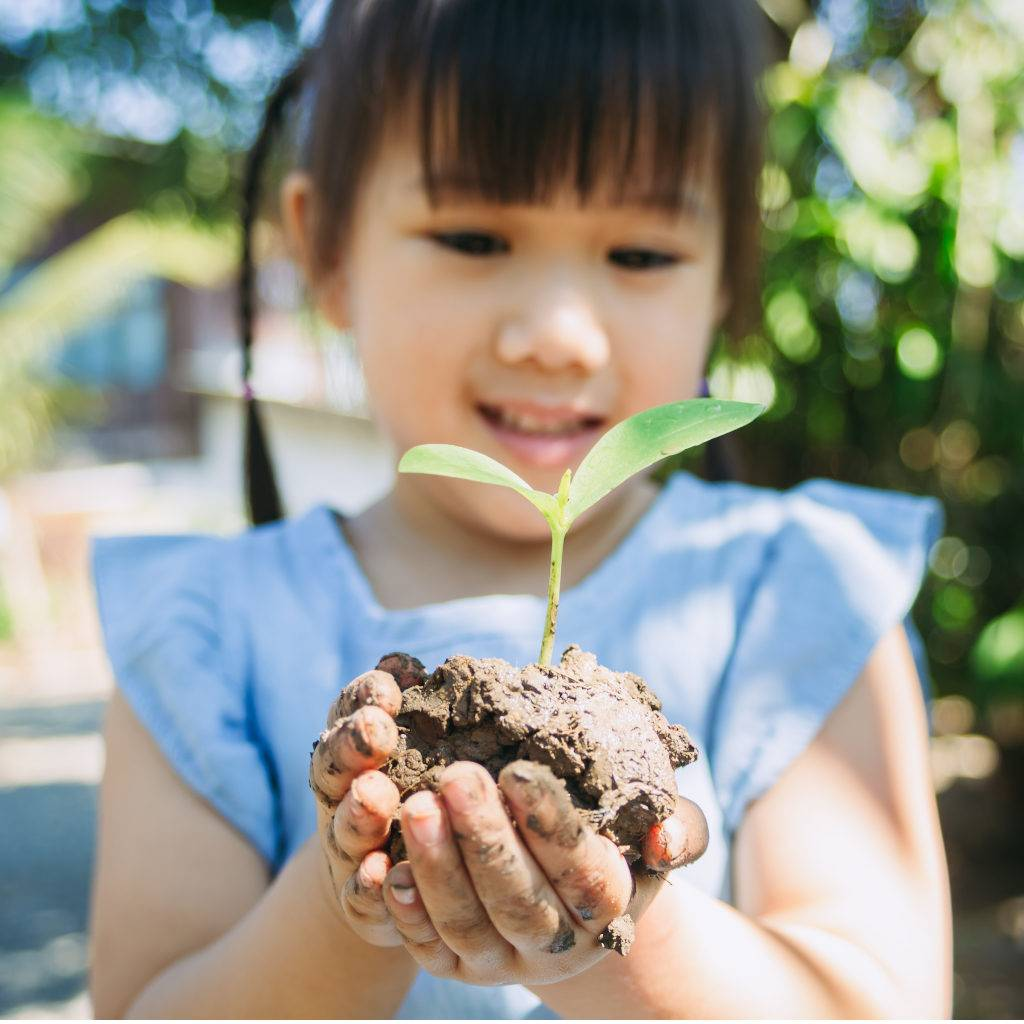Young girl child holding a tree seedling, plant a tree to save the Earth