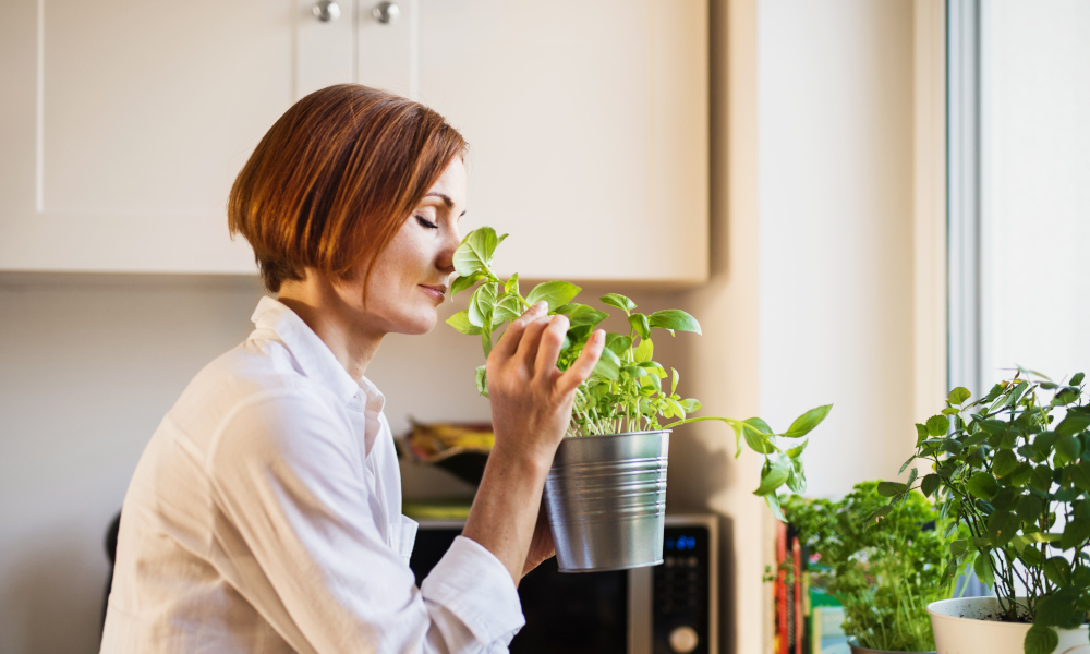 A young woman with closed eyes standing indoors in kitchen, smelling herbs.
